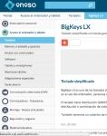 Captura de http://www.eneso.es/producto/bigkeys-lx